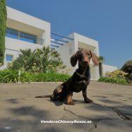 Espectacular Villa en Venta con Vistas a Africa.