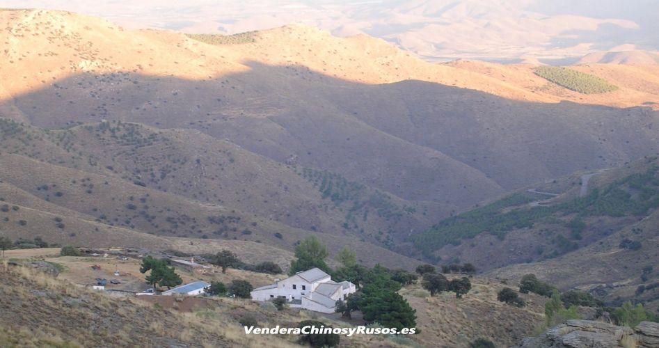 Finca en Granada - Andalucía - España